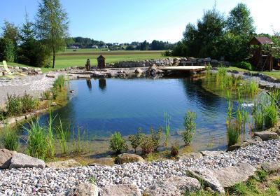 Kibitzhof - Schwimmteich