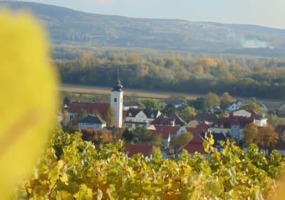 Herbstlicher Rohrendorfblick