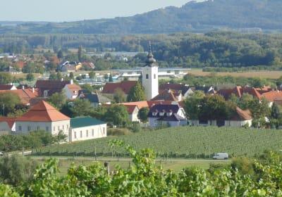 Rohrendorf im Sommerlook