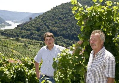 Weingut - Gästezimmer Gritsch