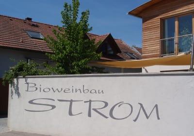Bioweinbau Strom