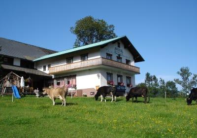 Höchbauer - Bauernhaus - Blick von der Zufahrt zum Hof