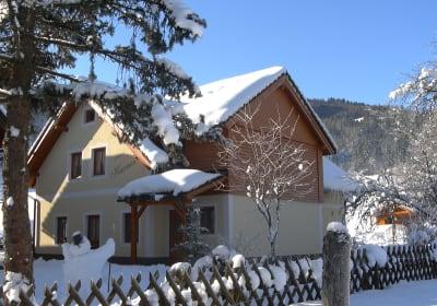 Haus Karner im Winter