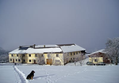 Forellenhof in winter