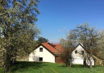 Ferienhaus Hochbrand (Geisbühel)