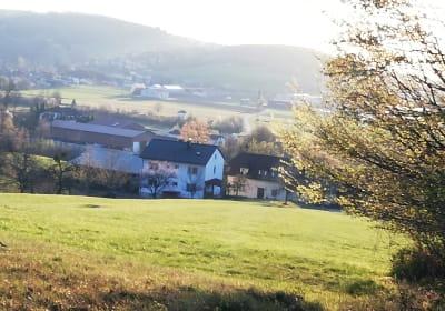 Grünbauer - Aussicht auf Hof