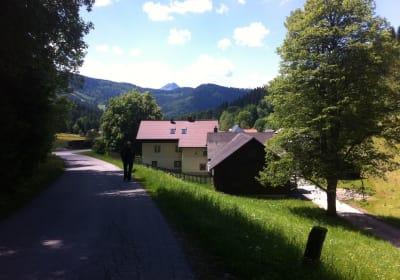 Ferienwohnung Ötscherwiese