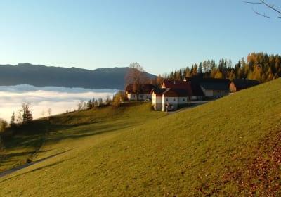 BIO Bauernhof Kurzeck