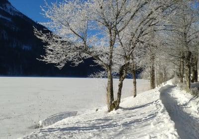 LUNZFerien - Winterlandschaft