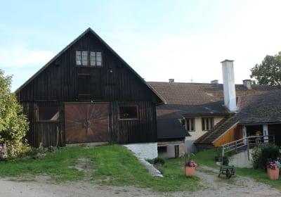 Hirmhof_Der Hof