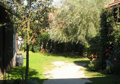 Our large courtyard for having fun and with lots of shady spots