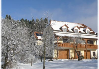View of house in winter