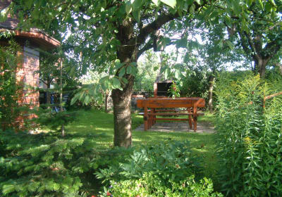 Schattiger Garten mit großem Griller