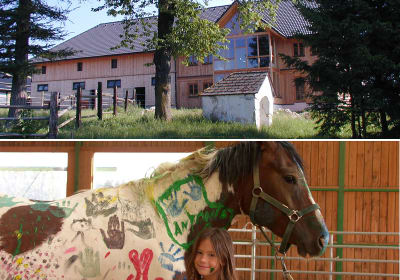 Farm in the countryside, a child cuddles a painted horse