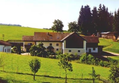 Ferienhof Kriechbaumer