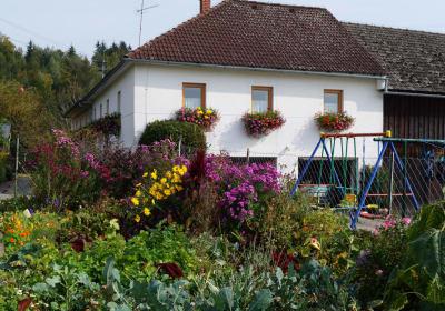 Das Haus vom Gemüsegarten aus