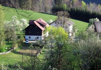 Familienbauernhof Pernkopf