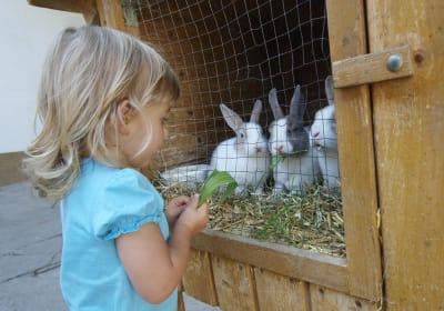 Baby-und Kinderbauernhof Salmanner