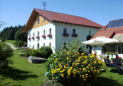View of guesthouse