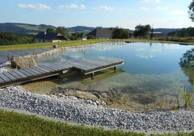 Badevergnügen im Schwimmteich am Nussbaumerhof