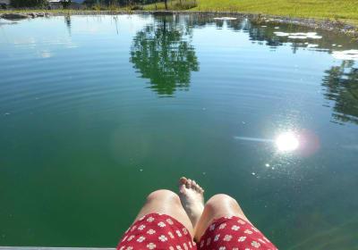 Die Badesaison ist eröffnet - 22 Grad - herrliches Wasser im Schwimmteich am Nussbaumerhof