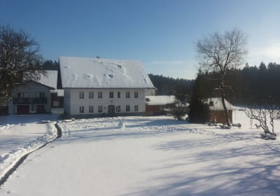 Winter am Rothstadlerhof