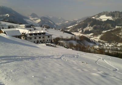 Ferienhof Miesrigl