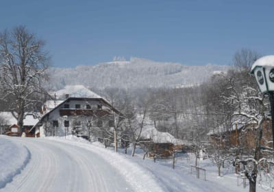 Winter Ferienhof Pfaffenlehen