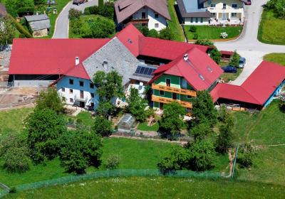 Luftaufnahme Hof