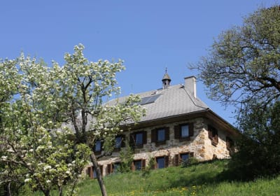 The house from the orchard