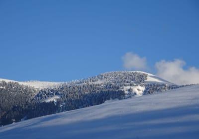 Blick zum Trattberg