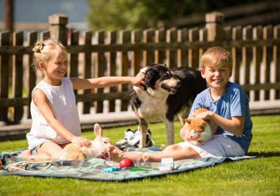 Kinder lieben Streicheltiere