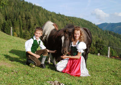 Ponys Prinz und Luna