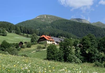 Tromörthof