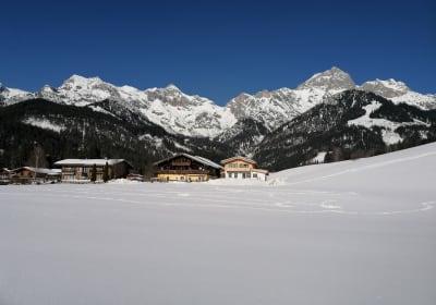 Buchauhof