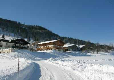Sauschneidhof