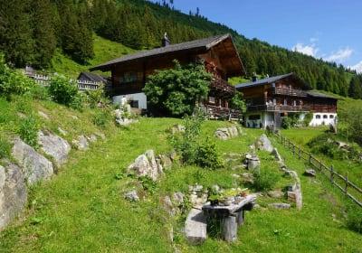 Die Hütten auf der Dürsteinalm