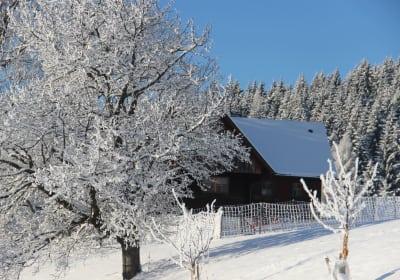 Sulmegg im Schnee