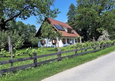 Weber-Hoisl-Mühle - Ferienhaus Garber