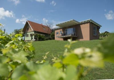 Weingartenhäuser
