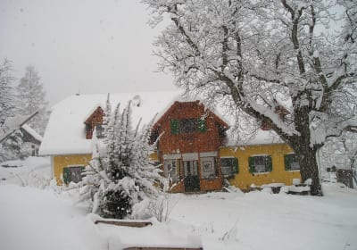 Organic Sommer farm in the snow