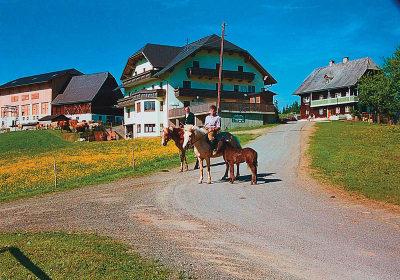 Almgasthof Ebnerhof
