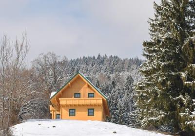 Winter am Fressenberg