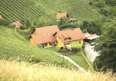 Blick vom Demmerkogel Richtung Weingut Stoff