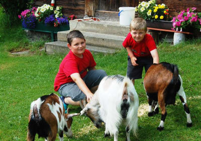 Children with the goats