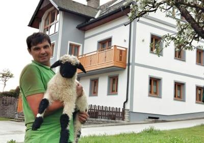 Unser Hof mit Schaferl