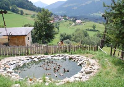 Lutzmannhof Moar z Winklern