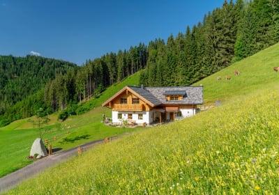 Luxus Urlaub in den Bergen - Almchalet Linharterhof