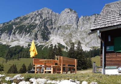 Unsere ruhig gelegene Almhütte schmiegt sich auf der Wartegg-/Ardningalm an das imposante Bergmassiv des Bosruck.