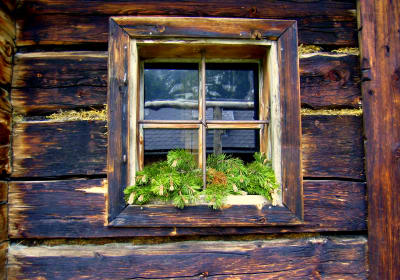 Pine window